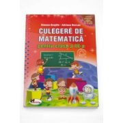 Simona Grujdin, Culegerea de matematica pentru clasa a III-a