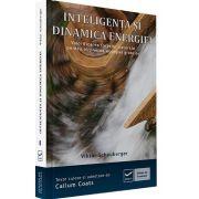 Viktor Schauberger, Inteligenta si dinamica energiei. Valorificarea fortelor naturale pentru obtinerea energiei gratuite