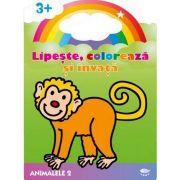 Animalele 2. Maimuta. Lipeste, coloreaza si invata - Varsta recomandata 3-6 ani