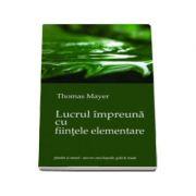 Lucrul impreuna cu fiintele elementare (Thomas Mayer)