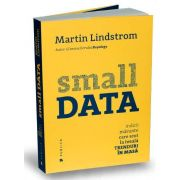 Small Data. Indicii marunte care scot la iveala trenduri in masa (Martin Lindstrom)
