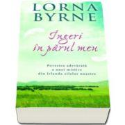Lorna Byrne, Ingeri in parul meu