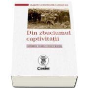 Maior Gheorghe Caracas, Din zbuciumul captivitatii. Centenarul Primului Razboi Mondial - De la 3 noiembrie 1916 pana la 30 iunie 1918