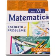 Exercitii si probleme de matematica pentru clasa a VI-a - Marius Burtea si Georgeta Burtea