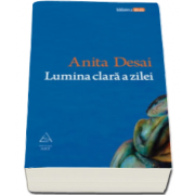 Anita Desai, Lumina clara a zilei