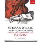 Stefan Zweig, Lupta in jurul unui rug - Castellio impotriva lui Calvin