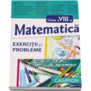 Matematica pentru clasa a VIII-a. Exercitii si probleme - Dana Radu si Eugen Radu