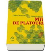 Gilles Deleuze, Mii de platouri