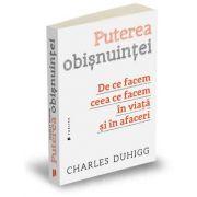 Charles Duhigg, Puterea obisnuintei - De ce facem ceea ce facem in viata si in afaceri