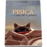 David Michie, Pisica lui Dalai Lama. Seninatatea si intelepciunea lui Dalai Lama, asa cum au fost ele vazute de catre cel mai intim oaspete al sau