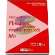Aplicatii de analiza matematica M1 pentru clasa a XI-a - Ilie Petre Iambor