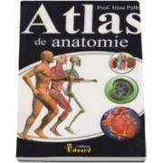 Atlas de anatomie (Irina Paller)