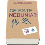 Darian Leader, Ce este nebunia