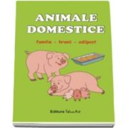 Animale domestice. Familie, hrana, adapost - set de jetoane