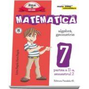 Matematica - CONSOLIDARE (2016 - 2017) Algebra si Geometrie, pentru clasa a VII-a. Partea II, semestrul II (Colectia mate 2000+)