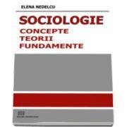 Sociologie: Concepte, norme, fundamente (Editia I)