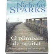 Nicholas Sparks, O plimbare de neuitat