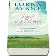 Ingeri in parul meu (Lorna Byrne)