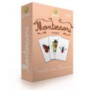 Insecte din Romania - Montessori vocabular de Maria Montessori