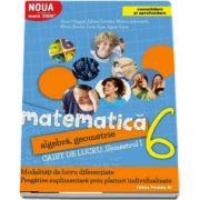 Sorin Peligrad, Matematica 2000. Algebra, geometrie. Caiet de lucru, pentru clasa a VI-a. Semestrul I (Consolidare si aprofundare)
