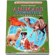 Animale domestice din intreaga lume - Sa cunoastem lumea impreuna! (Contine 16 cartonase cu imagini color) de Silvia Ursache