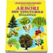 Arbori din tinuturile noastre - Sa cunoastem lumea impreuna! (Contine 16 cartonase cu imagini color) de Silvia Ursache