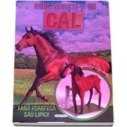 Construieste-ti un cal. Fara foarfeca sau lipici - Macheta de 43 cm lungime