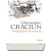 Aisbergul poeziei moderne de Gheorghe Craciun