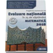 Ovidiu Badescu, Evaluare Nationala Matematica 2018. Pregatirea examenului de Evaluare Nationala in 25 de saptamani (45 de modele de teste finale)