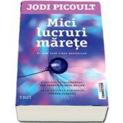Mici lucruri marete de Jodi Picoult