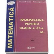 Matematica, manual pentru clasa a XI-a M1 de Marcel Tena
