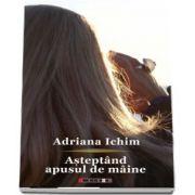Asteptand apusul de maine de Adriana Ichim