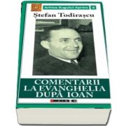 Comentarii la Evanghelia dupa Ioan de Stefan Todirascu