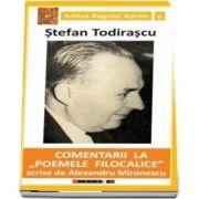 Comentarii la - Poemele filocalice - scrise de Alexandru Mironescu de Stefan Todirascu