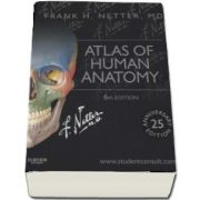 Atlas of Human Anatomy, including studentconsult interactive ancillaries and guides de Frank H. Netter, MD (6th Edition)