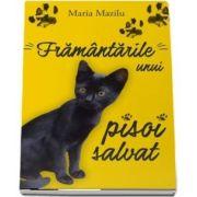 Framantarile unui pisoi salvat de Maria Mazilu