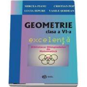 Geometrie clasa a VI-a, excelenta de Mircea Fianu