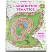 Labirinturi tematice pentru 4-5 ani (Laurentia Culea)
