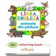 Limba engleza. Animale din padure. Colouring book