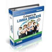 Culegere de limba engleza pentru clasele V-VIII - Daniela Stefania Ionescu