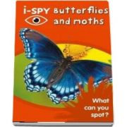 i-SPY Butterflies and Moths: What Can You Spot?
