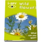 i-SPY Wild Flowers: What Can You Spot?