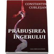 Prabusirea ingerului de Constantin Cublesan