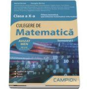 Marius Burtea - Culegere de matematica, clasa a X-a - Filiera teoretica, specializarea matematica-informatica - Semestrul I