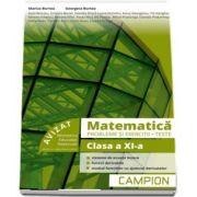 Marius Burtea - Culegere de matematica, clasa a XI-a. Probleme si exercitii, teste - Profilul tehnic. Semestrul II
