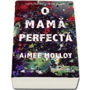 O mama perfecta de Aimee Molloy
