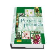 Plante de interior (Dorte Nissen)