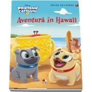 Aventura in Hawaii - Prietenii catelusi. Colectia Invat sa citesc (Nivelul 1)