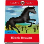 Black Beauty - Ladybird Readers (Level 6)