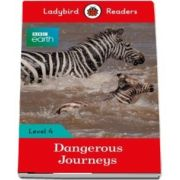 Dangerous Journeys - Ladybird Readers (Level 4)